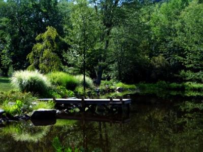 bkla studio - wetland restoration