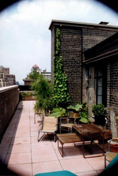 bkla studio - rooftop garden