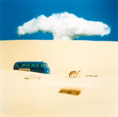 Fotograf Martin Magntorn - Lost dog, New Mexico