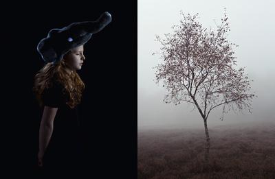 ANNIKA PESCH - Fotografie // Portrait, Editorial, Hochzeitsfotografie -