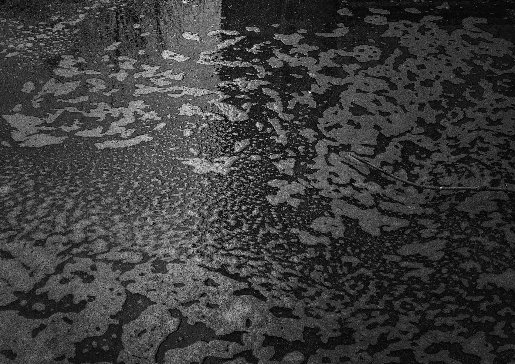protasiuk - The Narrow Daylight 7