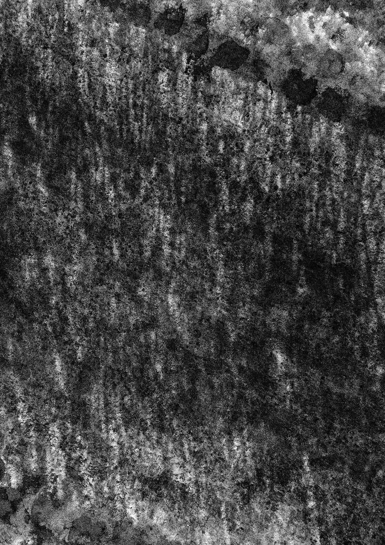 protasiuk - The Narrow Daylight 15