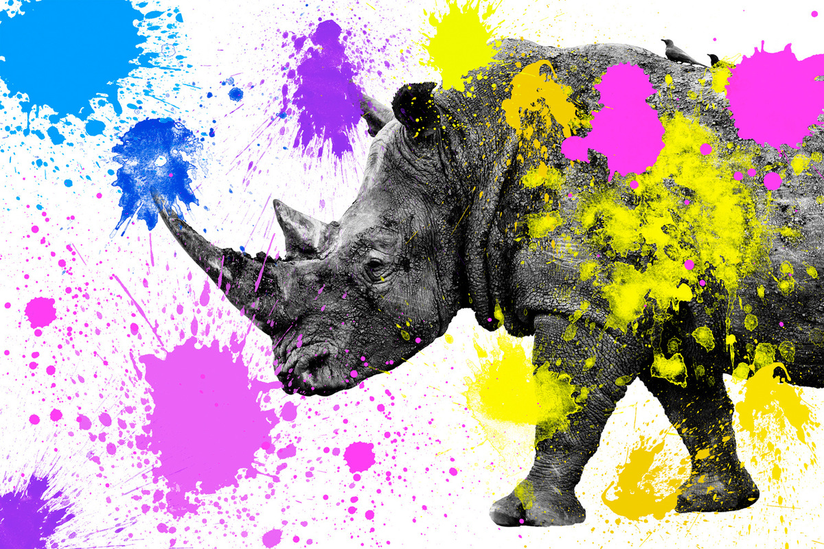 Philippe Hugonnard Photography - SAFARI COLORS POP / Colourful and stylised, Safari Colors Pop adds a bright, modern touch to minimalist portraits of wild animals. Black and white photography and bold paint combine for a unique contemporary result.