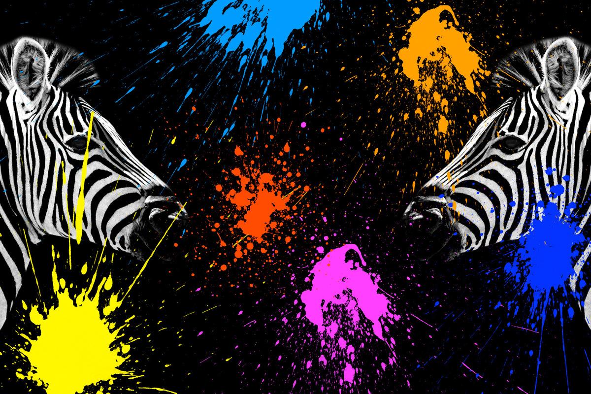 Philippe Hugonnard Photography - SAFARI COLORS POP / Coloré et design, Safari Colors Pop apporte modernité et couleurs à des portraits épurés d'animaux sauvages. Noir & Blanc et projections de peintures vives cohabitent pour un résultat contemporain et inédit.