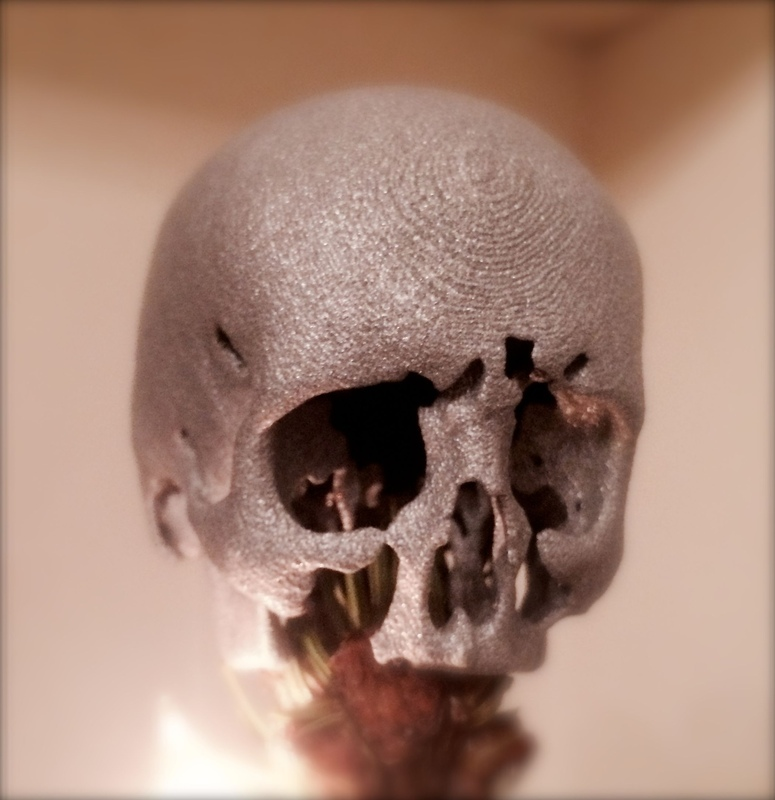 3D Anatomical Modelling by Dr Hugh Harvey - 3D printed anatomically accurate skull from CT DICOM data