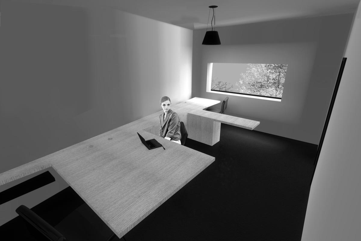 dumas-architectures Lyon - Bureau
