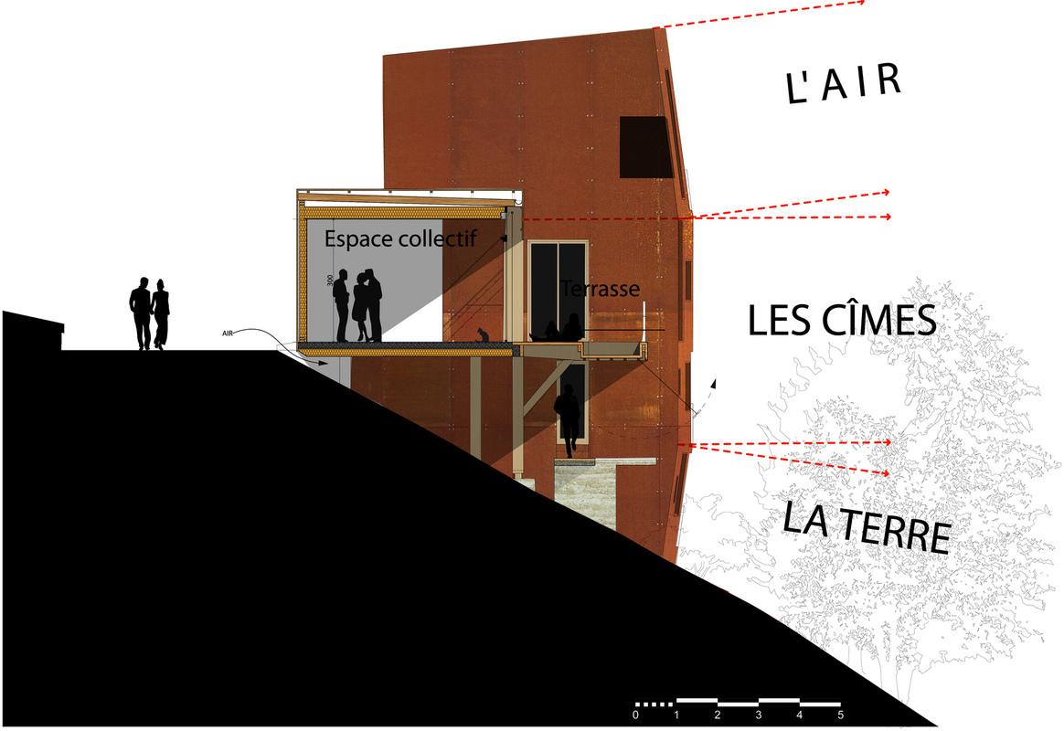 dumas-architectures Lyon - Coupe