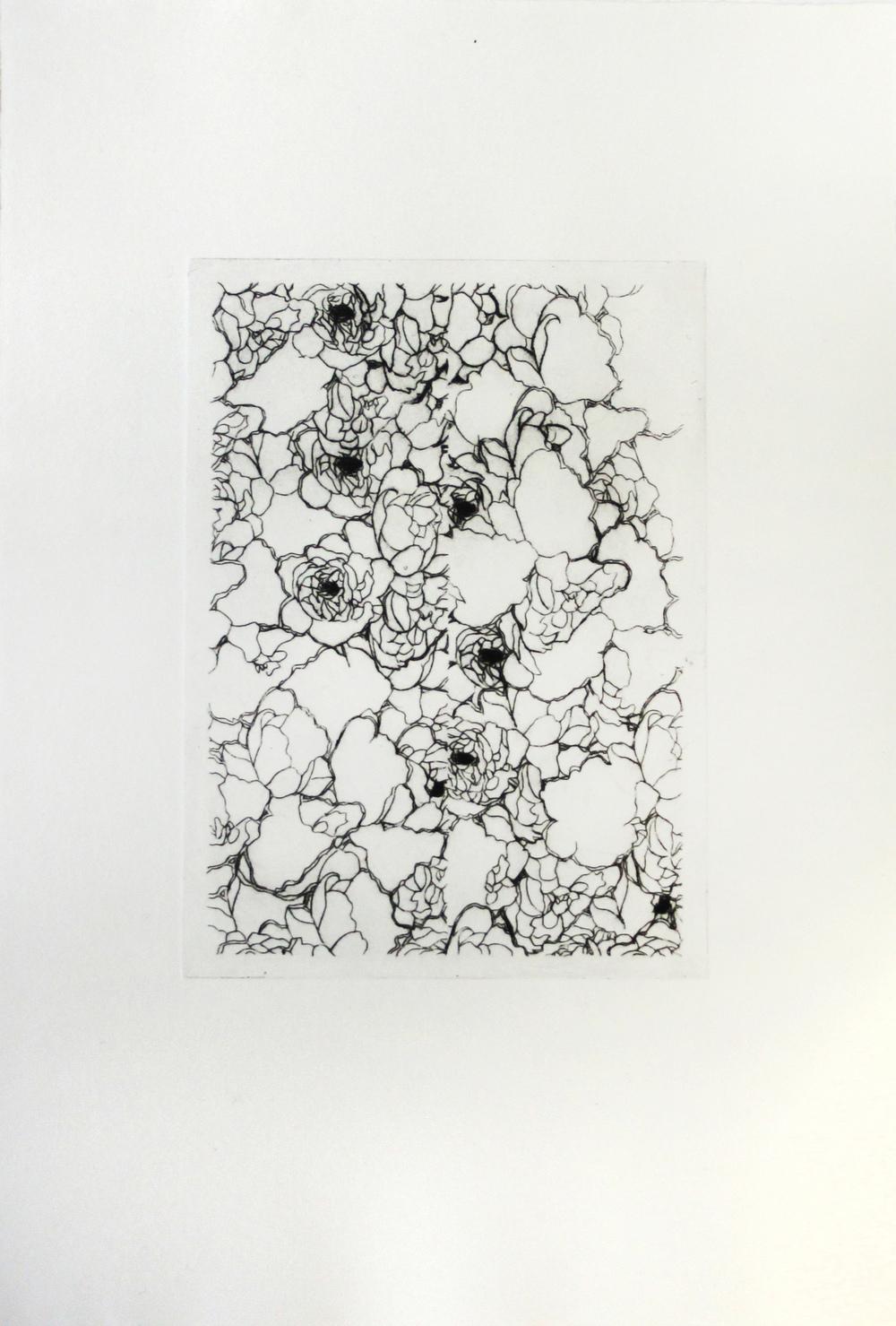 Luana Cruciato - Sans titre Gravure sur plexi 22cm x 12cm 2013