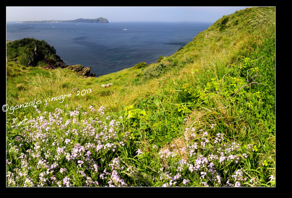 Fotografias - costa Jeju