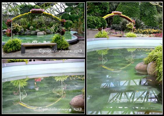 Fotografias - Jardín Botánico Yeomiji