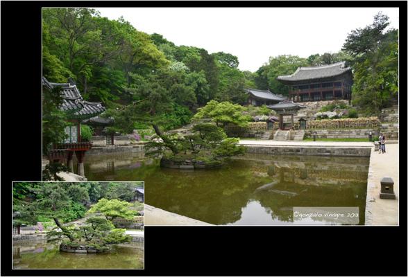 Fotografias - en el Palacio Changdeokgung