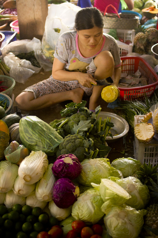 Iselin Shaw of Tordarroch - A local girl prepares fruit and vegetables for sale at one of many busy markets in the town of Hoi An in Vietnam.