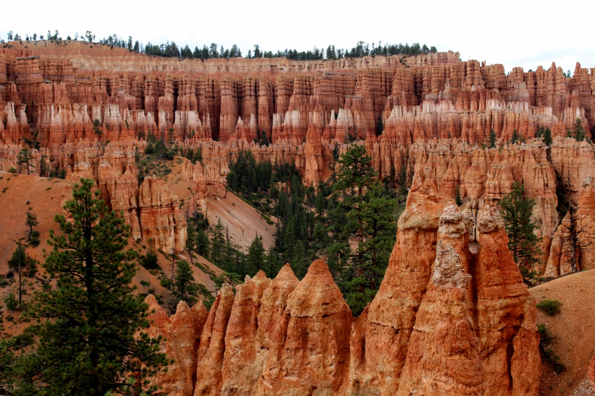Genevieve French Photography - Hoodoos, Bryce Canyon National