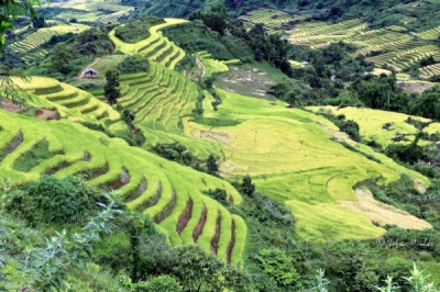 face of vietnam - LANDSCAPES...