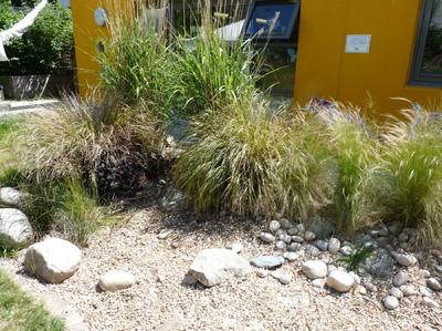Mike Shadbolt Landscape Architect -