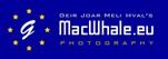 MacWhale.eu photography (Geir Joar Meli Hval)
