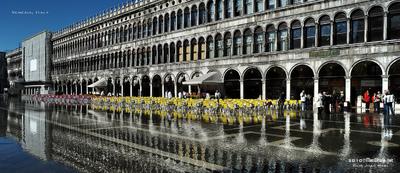 MacWhale.eu photography (Geir Joar Meli Hval) - Venezia
