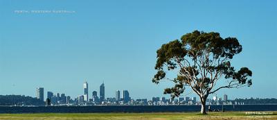 MacWhale.eu photography (Geir Joar Meli Hval) - Perth
