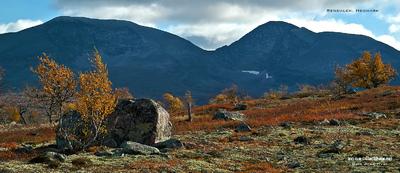 MacWhale.eu photography (Geir Joar Meli Hval) - Rendalen