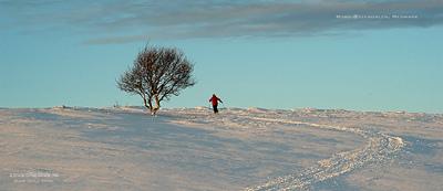 MacWhale.eu photography (Geir Joar Meli Hval) - Os in Østerdalen