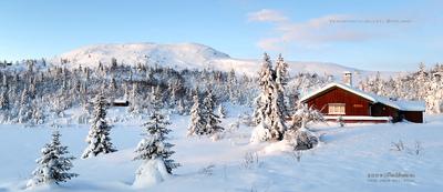 MacWhale.eu photography (Geir Joar Meli Hval) - Venabygdsfjellet
