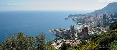 MacWhale.eu photography (Geir Joar Meli Hval) - Monaco