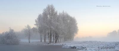 MacWhale.eu photography (Geir Joar Meli Hval) - Maura