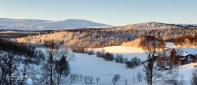 MacWhale.eu photography (Geir Joar Meli Hval) - Dalsbygda