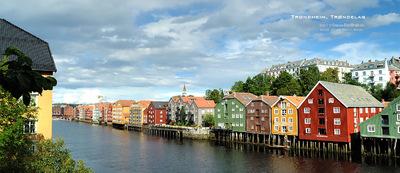 MacWhale.eu photography (Geir Joar Meli Hval) - Trondheim