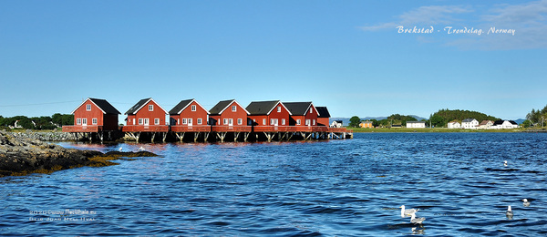 MacWhale.eu photography (Geir Joar Meli Hval) - Brekstad