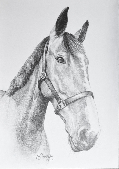 Andrew Shannon Art - Altrest - A4 Pencil Sketch