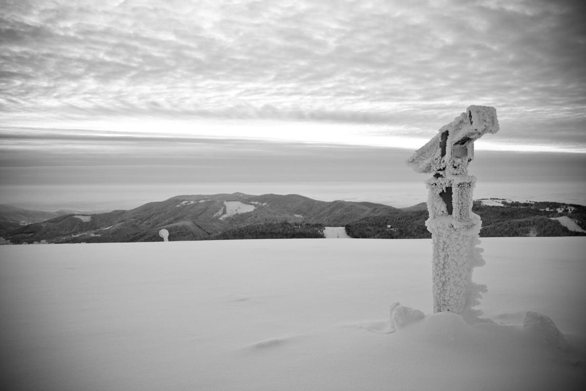 Vincent Courtois, photographe -