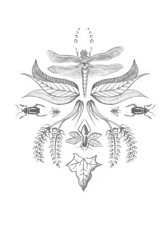 emilykarlssondesign -