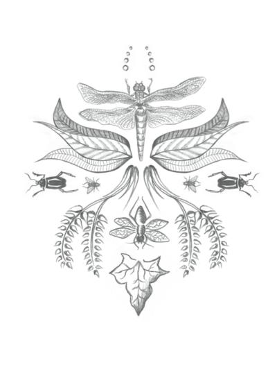 emilykarlssondesign - Mönster - Handritat