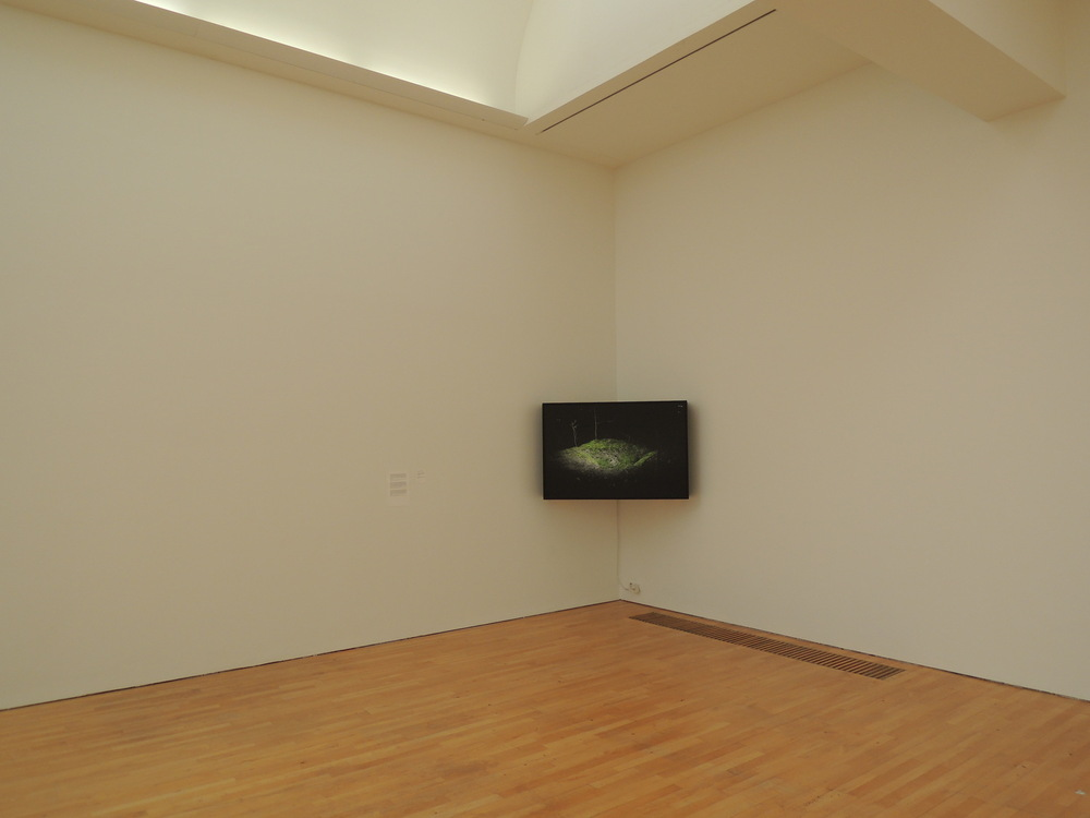 Dennis Ramaekers - Installation view