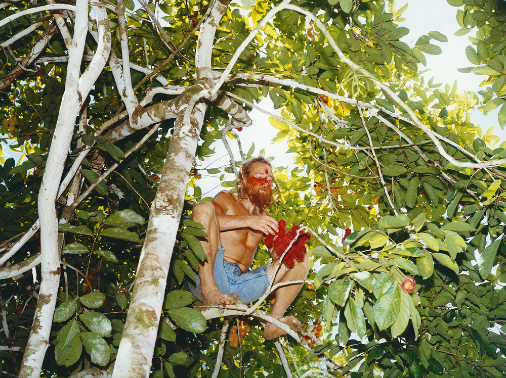 Fotografin Hamburg Reportage Portrait Reise Editorial Corporate Werbung Photography - Tenasi on a tree, harvesting lychee, Dominical, Costa Rica