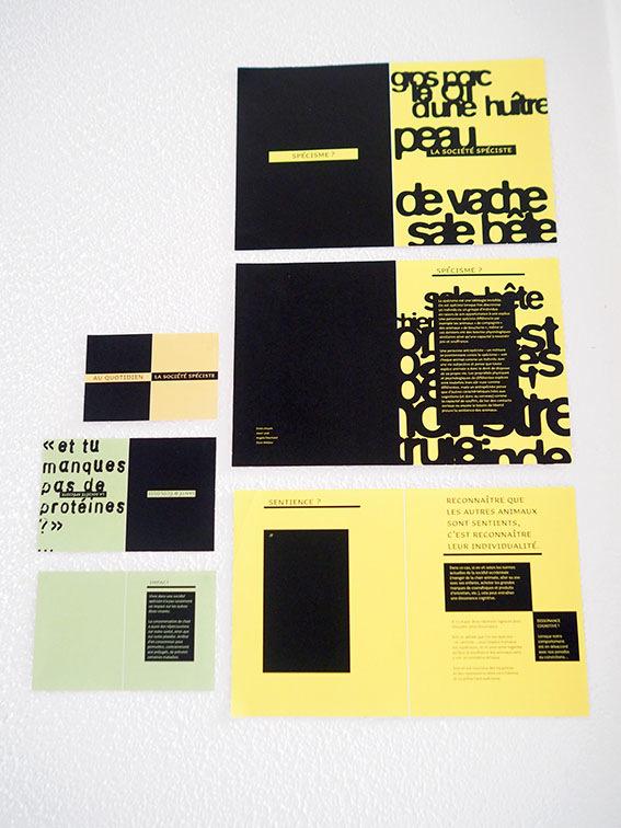 Angela Deschand - recherches de ligne graphique pour des éditions