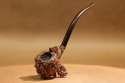 agnesbovis - Pipe Synanceia verrucosa
