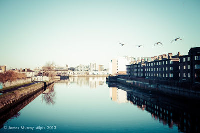 stilpix - Swans over Ringsend