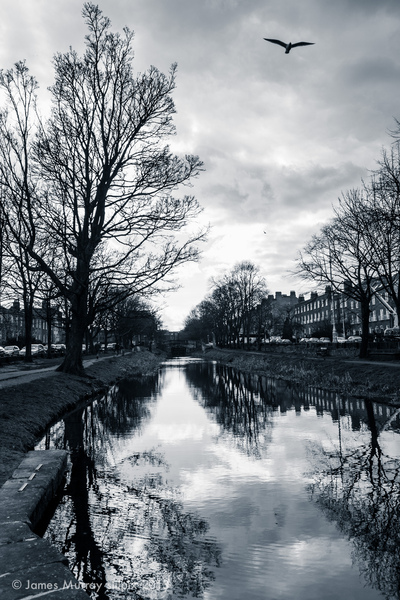 stilpix - Grand Canal, Dublin, 5