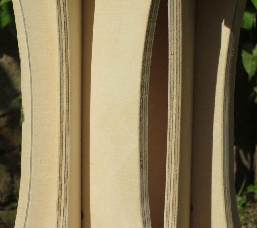 Tamandua - Detail neck