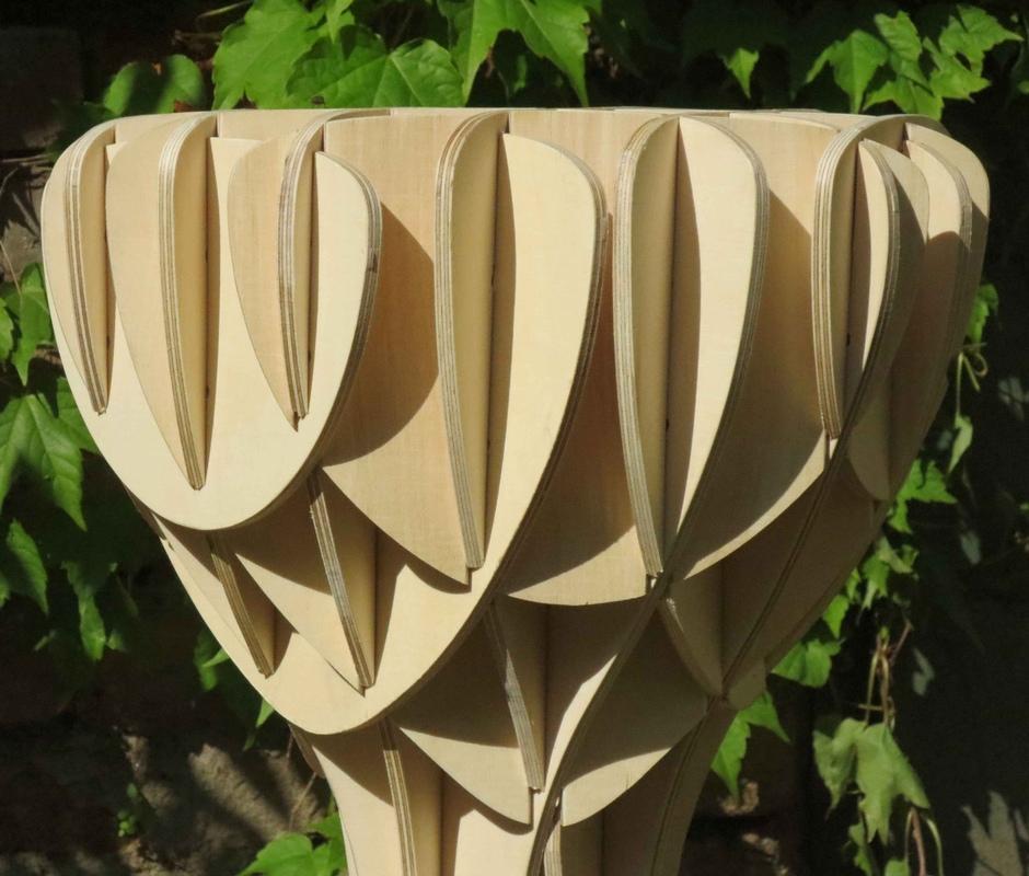 Tamandua - Detail upper part