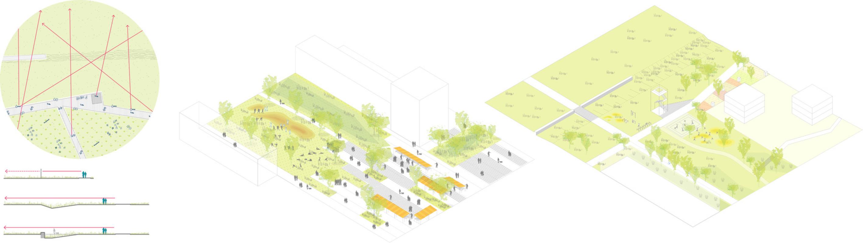 Tamandua - Open spaces schemes