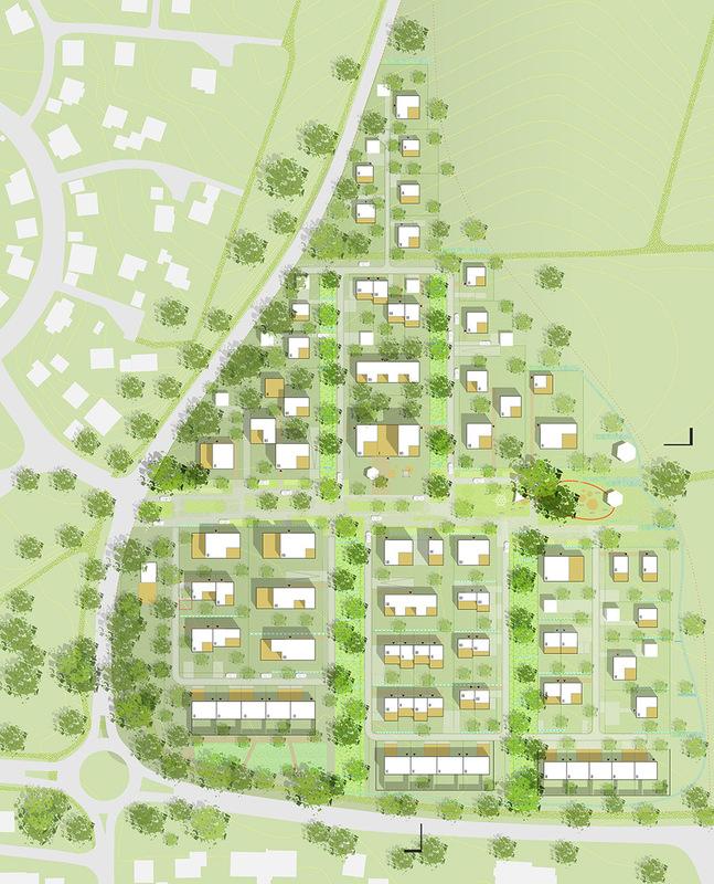 Tamandua - Masterplan