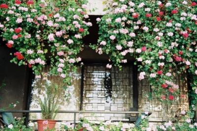 catarina schmid photography - balkon