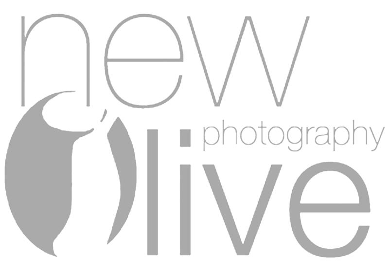 New Olive Photography