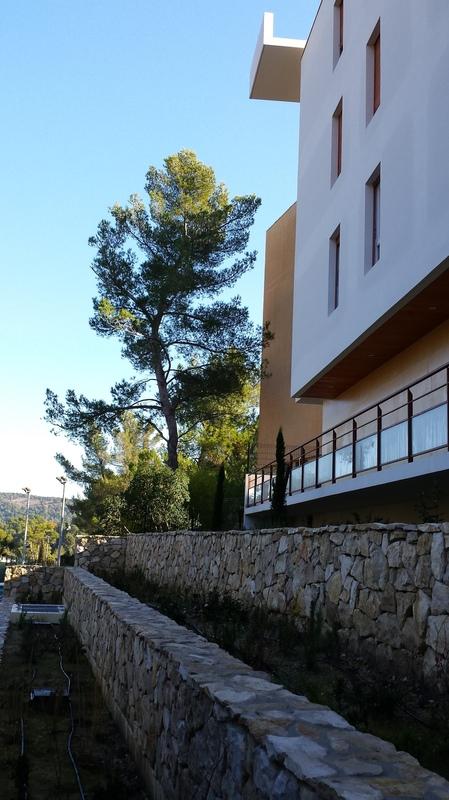 Architecte Marseille - Agence Elbaz Architecture à Marseille (13007) - Nous avons conservé le maximum de pins existant sur la parcelle, ce qui a permis de bien intégrer le bâtiment qui contraste par sa blancheur méditerranéenne avec les pins parasols alentour.