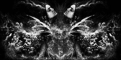 Nellis Eketorp Portfolio - Shiftwind