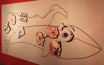 illustration - Endprodukt - fertiges Ausstellungsobjekt