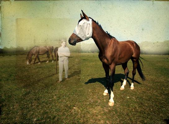 Lotte Agger - Hestepige